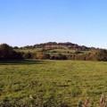 The Devon lane in early Autumn