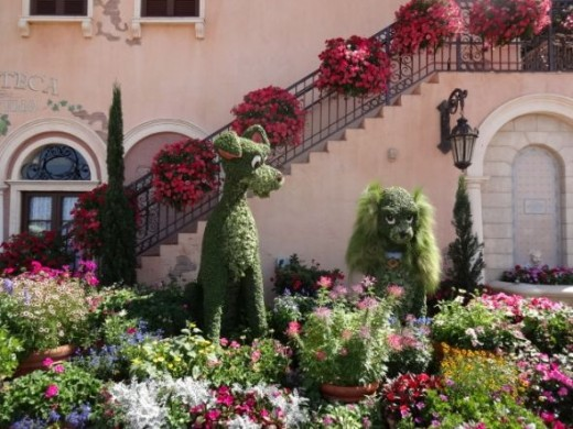 The Lady and the Tramp Topiary at Epcot