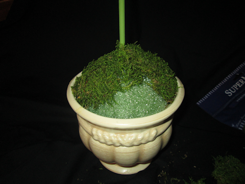 I did it in sections and used my hot glue gun (with foam glue sticks) to secure the moss.