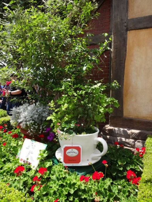 Part of the English Tea Garden Display at the United Kingdom