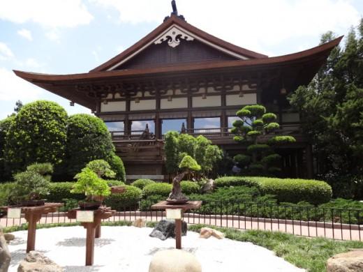 Beautiful Bonsai Collection at Japan