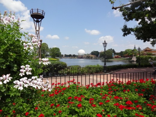 Brightly Colored Blooms Surrounding World Showcase Lagoon