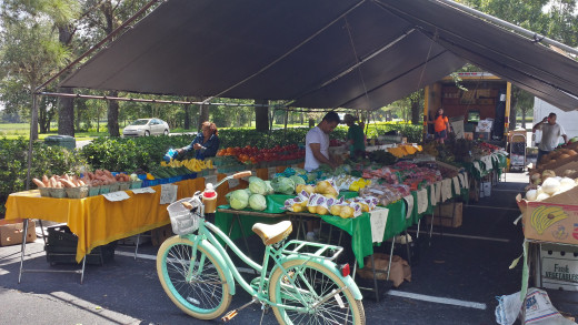 On This Day I Purchased Tomatoes, Peaches, Hot Peppers, Green Onions, Grapes & Mushrooms!
