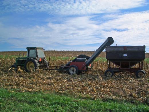 My Dad Working the Fields