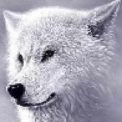 OldGrampa profile image