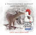 Stranger in the Woods - An Enchanted Snowman's Woodland Adventure