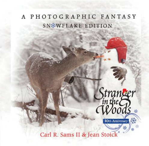 Cover of Stranger in the Woods
