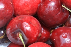 Cherries are great with chocolate fondue   (Photo by Cheryl Rogers)