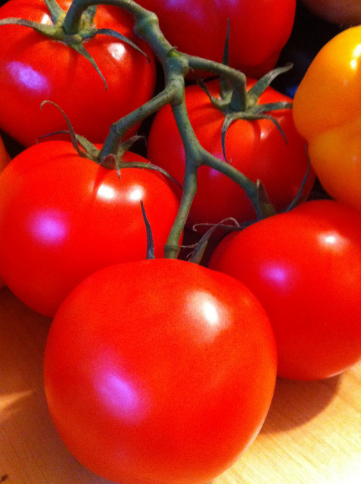 red tomatoes on the vine for tomato sauce
