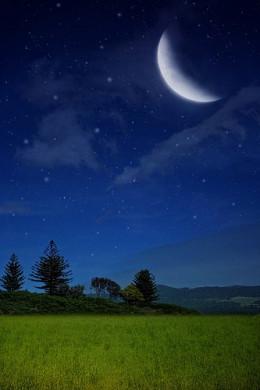 Night Season of Dreaming.
