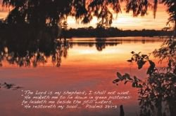 Psalm 23:1-3 Scripture Poster   (Art by Cheryl Rogers)