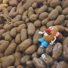 Mr. Potato Head