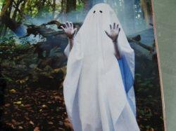 Cool Ghost. Photo Credit - Elsie Hagley
