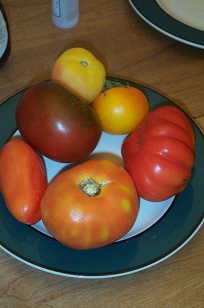 Heirloom tomatoes. Photo Credit - http://en.wikipedia.org/wiki/Tomato