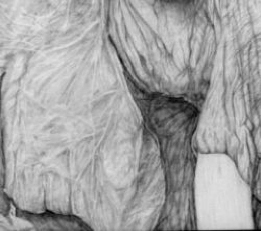 Cropped Portion Of Pencil Drawing To Show Detail