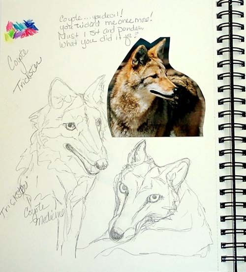My Coyote Page From My Totem Series Artist Journal