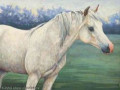 Artwork Created To Benefit Equine Rescue