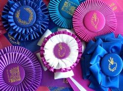 Some of my ribbons