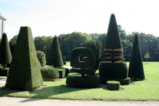 Topiary clipped into the shapes of chess pieces