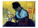 a novel reader