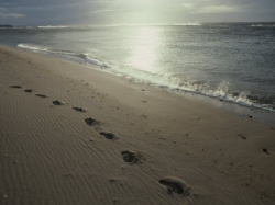footprints - small steps - pace