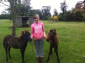 Success with the folas and getting them onto their halters leading ropes Becky is so Proud!