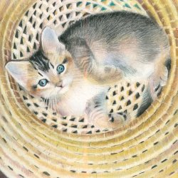 """Pick of the Litter"" - a coloured pencil drawing  copyright Katherine Tyrrell"