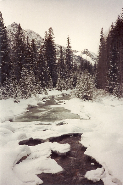 Railroad Creek in snowy glory.