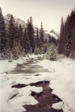 Railroad Creek in snowy glory.