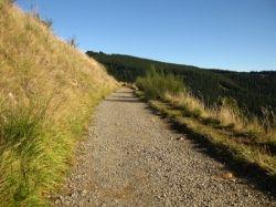 Harry Ell walkway, Christchurch, New Zealand