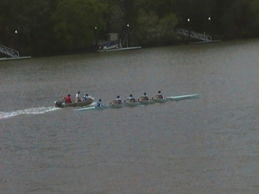 UQ, Rowing on Brisbane River, St Lucia