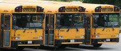 School Bus Summer