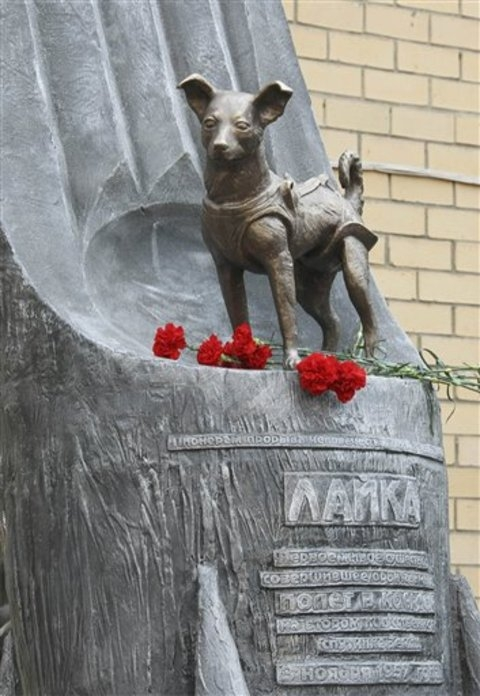 Russia has decided to give Laika a permanent statue of her very own near Moscow's Military Medicine Institute.