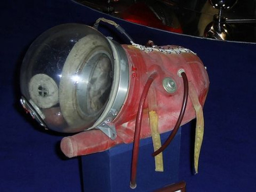 Laika sailed into space wearing a spacesuit like this one on display at the Moscow Space Museum.