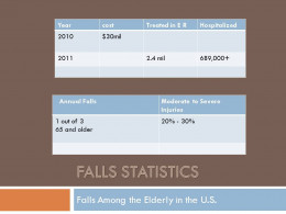 Falls Statics Among the Elderly