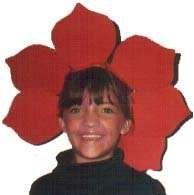 http://www.google.com/imgres?q=easy+flower+costume&hl=en&sa=X&biw=837&bih=536&tbm=isch&prmd=imvns&tbnid=7mRuIMcWkvnUqM:&imgrefurl=http://crafts.kaboose.com/flower-costume.html&docid=peCy1eMUWYKsoM&imgurl=http:/