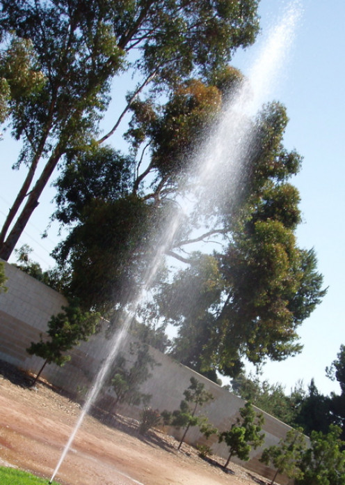 Irrigation system gusher (geyser) - a sprinkler head broke off and water under pressure is shooting up into the sky.