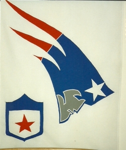 Flags for fun - Patriots