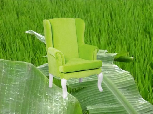 lime green chairs