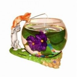 Unique fish bowls and tanks for Best place to buy betta fish