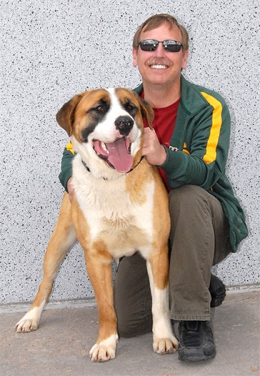 Our handsome guy, Beau, just found a new best friend in Michael. We think this is a totally dynamic duo.