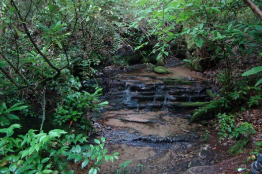 "A mini waterfall, reached by ""Pan's Path"" trail."