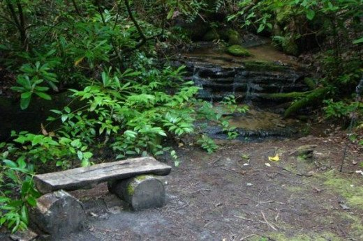 A nice place to sit and meditate or listen to the sounds of nature all around.
