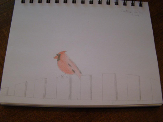 A nature study on birds led to this nature journal entry.