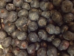 The Blueberries - don't forget to wash them.