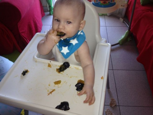 Our Baby Led Weaning journey: Damsons were an early favourite.