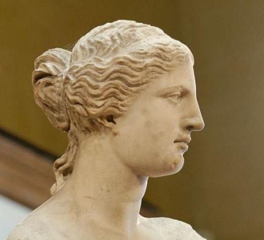 Venus de Milo Bust
