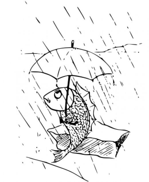 Umbrella Coloring Sheet