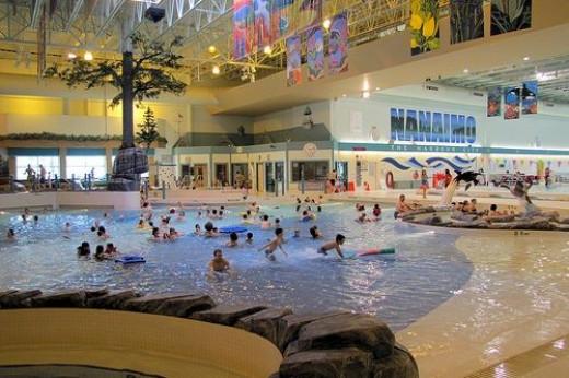 Aquatic Park Swimming