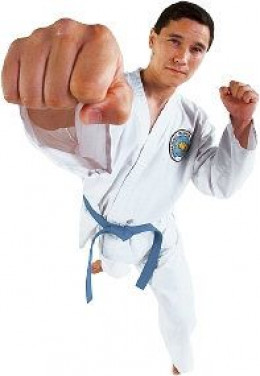 Tae kwon do and hapkido